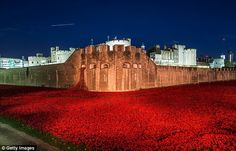 The installation of over 888,000 red ceramic poppies was created by ceramic artist Paul Cummins, each poppy representing a British or colonial fatality during World War One.