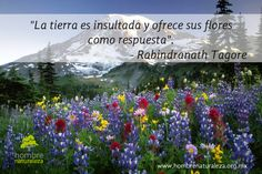 """""""La tierra es insultada y ofrece sus flores como respuesta"""". Rabindranath Tagore"""