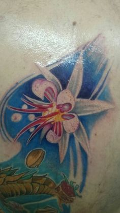 Flower cacao tatto
