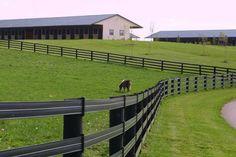 3 ft tall fence ideas | Horse Fence Direct - Centaur Cenflex Fence