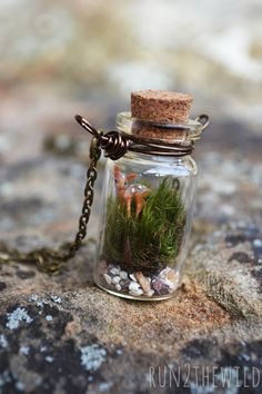 FOREST FAWN Bottled Terrarium Necklace by Run2theWild on Etsy