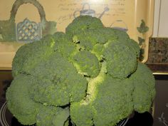 una comida sana:brocoli