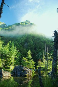 Nagano 上高地 明神池