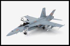 Hasegawa 1/48 F/A-18E Super Hornet