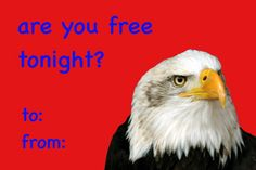 The Very Best Valentines of Tumblr : Photo