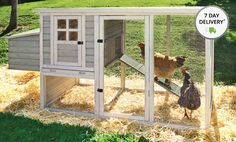 Groupon deal on backyard chicken coop.