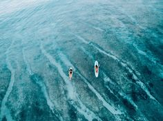 Monyca Eleogram and Mainei Kinimaka paddling into a turquoise dream 〰 Read about their day cruising Hawaii's North Shore with the Herewith Magazine crew in search of a little #WildAloha  herewith.com/wild-aloha/