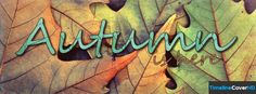 Autumn Is Here Facebook Timeline Cover Hd Facebook Covers - Timeline Cover HD