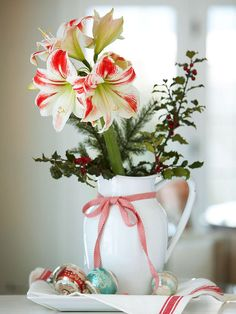Two-Toned Amaryllis with Greenery