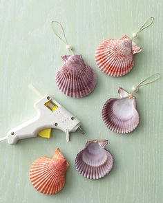 I have sooo many shells! You could paint them different colors to match your christmas decor.