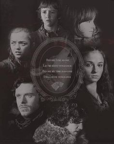 Winter Is Coming Stark Game Of Thrones Winter Is Coming Stark, Winter Is Here, Winter Coming, Got Game Of Thrones, Game Of Thrones Quotes, Sansa Stark, Bran Stark, Hbo Series, Best Series
