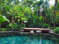 Having a pool sounds awesome especially if you are working with the best backyard pool landscaping ideas there is. How you design a proper backyard with a pool matters. Bali Garden, Balinese Garden, Garden Pool, Dream Garden, Party Garden, Garden Bridge, Tropical Garden Design, Garden Landscape Design, Landscape Architecture