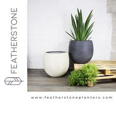 ONLINE SHOP NOW OPEN!!!⠀ Our large lightweight planters are now on sale online and can be shipped (free) anywhere in the USA! www.featherstoneplanters.com