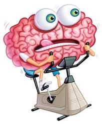 cerebro ejercicio