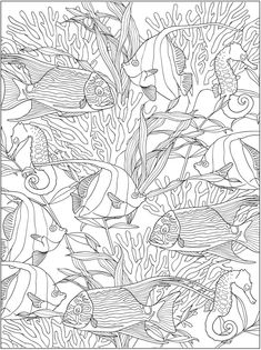 Creative Haven Truly Tropical Coloring Book @ Dover Publications Fish Coloring Page, Animal Coloring Pages, Coloring Pages To Print, Coloring Book Pages, Printable Coloring Pages, Coloring Sheets, Zentangle, Free Adult Coloring, Dover Publications