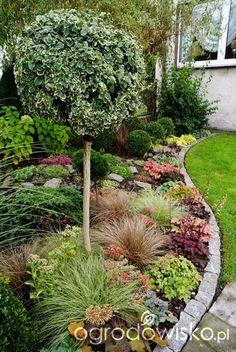 I Am Organic Gardening Code: 8630172919 Front House Landscaping, Backyard Garden Landscape, Garden Landscape Design, Backyard Landscaping, Farm Gardens, Outdoor Gardens, Front Yard Planters, Home Vegetable Garden, Small Space Gardening