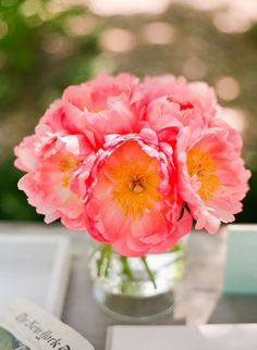 If you are getting married in june these gorgeous flowers could be yours.  Love peonies.