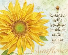 "Sunflower -♥- ""Kindness is the sunshine in which virtue grows"" Sunflower Quotes, Sunflower Pictures, Sunflower Art, Sunflower Tattoos, Sunflower Kitchen, Sunflower Garden, Happy Sunday Quotes, Morning Quotes, Monday Quotes"