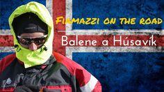 Fiamazzi on the Road - ICELAND - Giorno 10