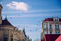 Place de la Vieille Ville Louvre, Building, Travel, Visit Prague, Old Town, Viajes, Buildings, Destinations, Traveling