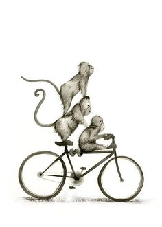 From a series of ambiguous primates riding various wheeled transportation.