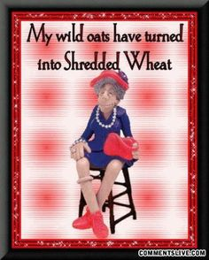My Wild Oats have turned into Shredded Wheat LOL ! Alter Humor, Old Age Humor, Aging Humor, Senior Humor, Red Hat Society, Animation, Just For Laughs, Getting Old, Make You Smile