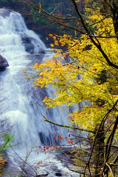 High Falls at DuPont State Forest in the NC mountains with fall color.