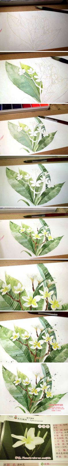 picture tutorial of flowers in watercolor