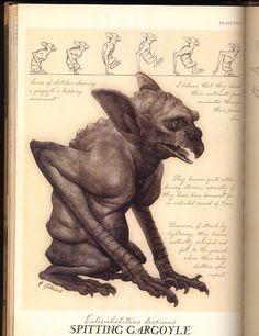 http://images1.wikia.nocookie.net/__cb20120904093328/spiderwick/images/6/6c/Spitting_Gargoyle.jpg