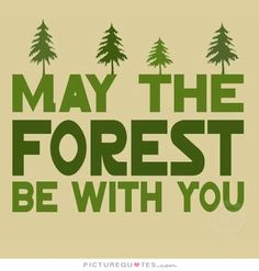May the forest be with you. Go green quotes on PictureQuotes.com.