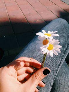 ✧✿♕ Pinterest: @Laahalvher ☪❁