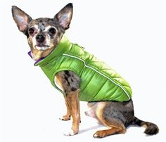 Hip Doggie Featherlite Reversible/Reflective Puffer Vest Jacket in Color Green/Purple