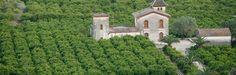 15 Tierra de naranjos #valenciaturisme Valencia, Portal, Mansions, House Styles, Orange Trees, Earth, Tourism, Manor Houses, Villas