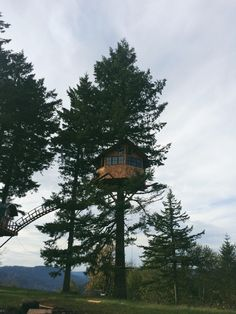 Awesome tree house #treehouses #treehouse - http://www.geeksnboobz.nl/geek-stuff/awesome-tree-houses-awesome-1589/