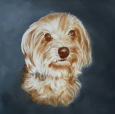 'Sammy', portrait of a mix Yorkshire-maltezer.  Painted by Anne-Fieke Later