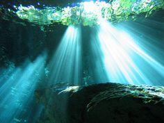 Hidden Worlds Cenote, Yucatan sftechnology