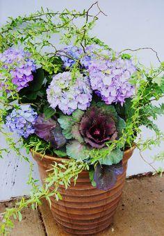 New Spring arrangement
