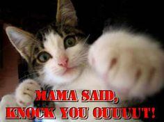 mama said knock you out!