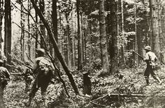 American infantrymen pushing through the German-held Hurtgen Forest