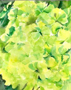 Green Hydrangeas Watercolor Painting original by SharonFosterArt, $37.50