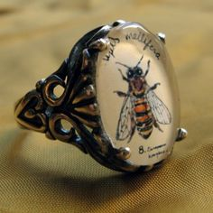 Bee Ring Natural History Illustrated Jewelry by tstellanova