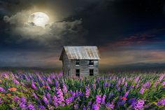 Old Barns Stock Pictures, Royalty-free Photos & Images Stock Pictures, Stock Photos, Old Barns, Royalty Free Images, Moon, House Styles, Painting, The Moon, Painting Art