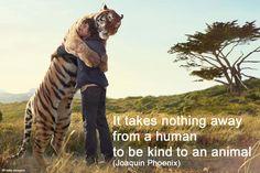 Learn more about animal welfare here: http://www.endinghunger.org/en/educate/animal_welfare.html