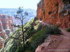 Hiking the Grand Canyon...baby steps!