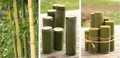 Image result for Pinterest - ideas for DIY green houses