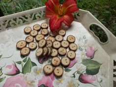 Pecan Tree Branch Buttons