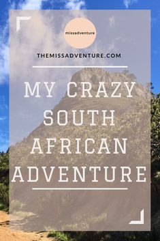 The MissAdventure inspires women to explore the globe together! Lions Head Cape Town, Table Mountain, Destin Beach, My Crazy, City Break, Africa Travel, Day Trip, Travel Guides, Penguins