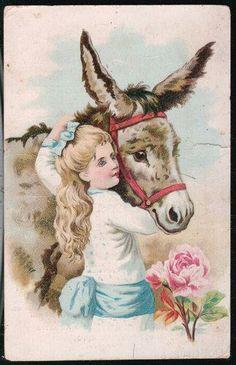 Vintage donkey love~