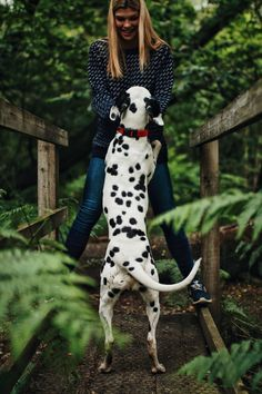 Dog Dalmatian Dog Pets One Animal Spotted Domestic Animals One Person Young Women Day Full Length Young Adult Mammal Outdoors Standing Women Nature One Woman Only Adult People Adults Only