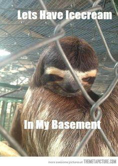 Creepy sloth